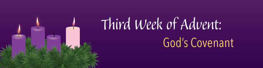 candles - Third Week of Advent
