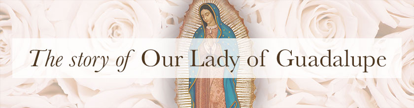 The story of Our Lady of Guadalupe